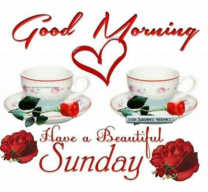 Good Morning Beautiful Sunday : Good morning have a beautiful sunday pictures photos