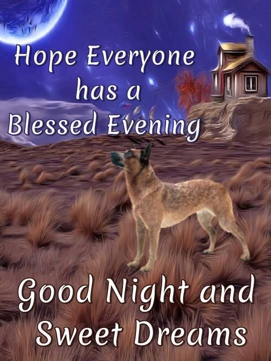 Hope Everyone Has A Blessed Evening Pictures, Photos, and