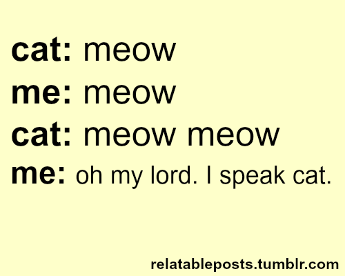 The Cat S Meow And Other Sayings