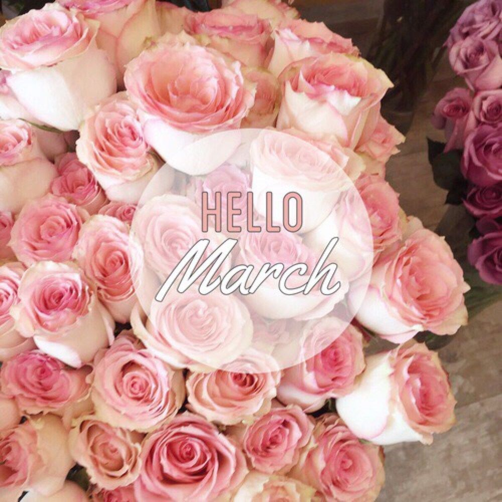 67 Best Trending News Viral Videos Images On Pinterest: Hello March Pictures, Photos, And Images For Facebook