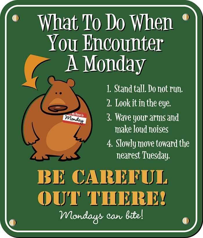 Monday Morning Humor Quotes: What To Do When You Encounter A Monday Pictures, Photos