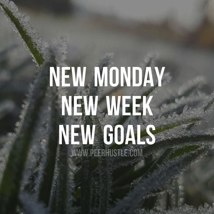 New Monday, New Week, New Goals Pictures, Photos, And