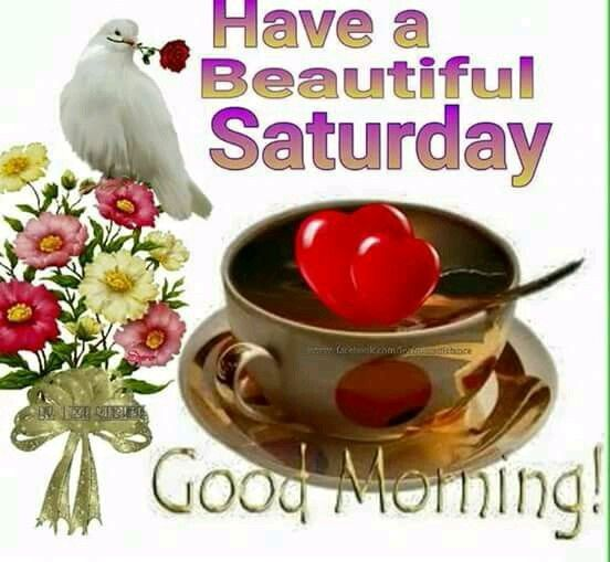 Good Morning Everyone Saturday : Have a beautiful saturday good morning pictures photos