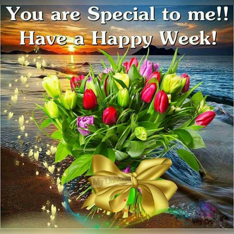 Image result for happy week