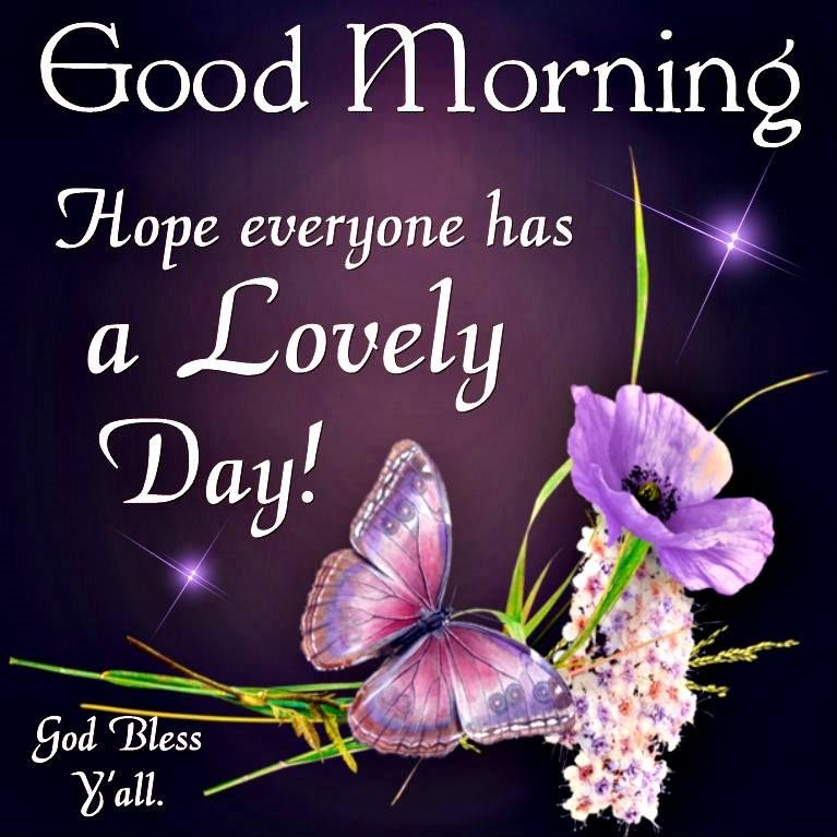 Good Morning Y All : Good morning hope every has a lovely day god bless y all