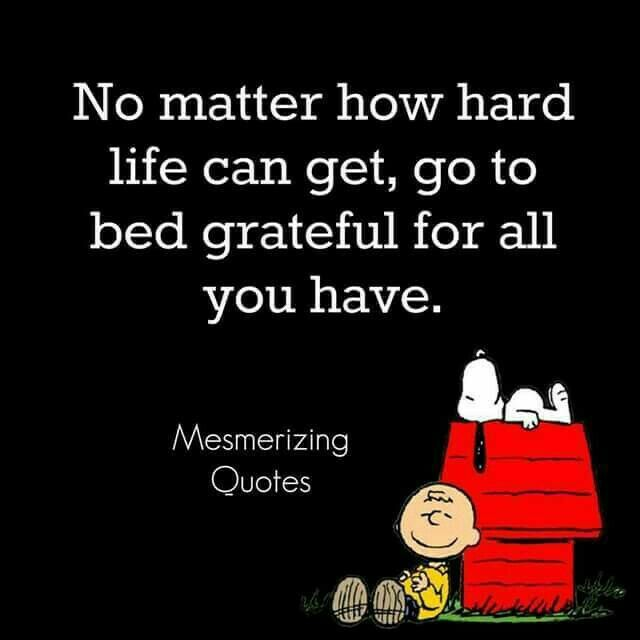 Cartoon Life Quotes: No Matter How Hard Life Can Get, Go To Bed Grateful For