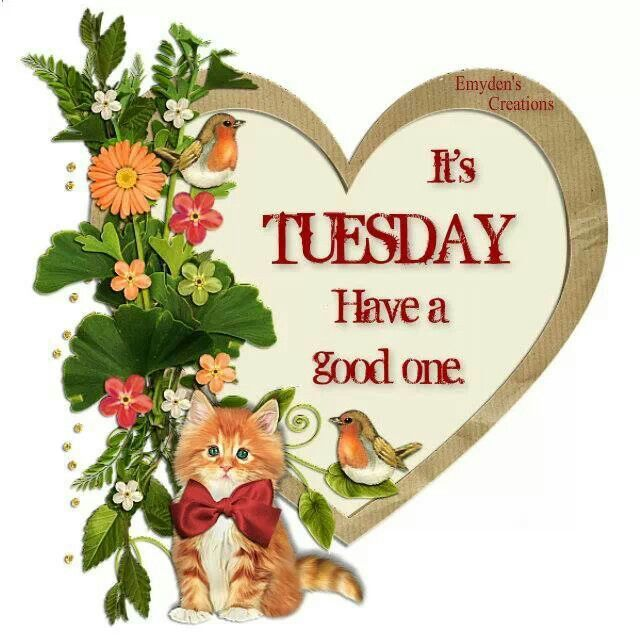 300213-Its-Tuesday-Have-A-Good-One.jpg