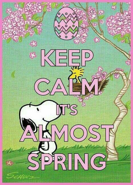 Sing its spring | Lovesvg.com