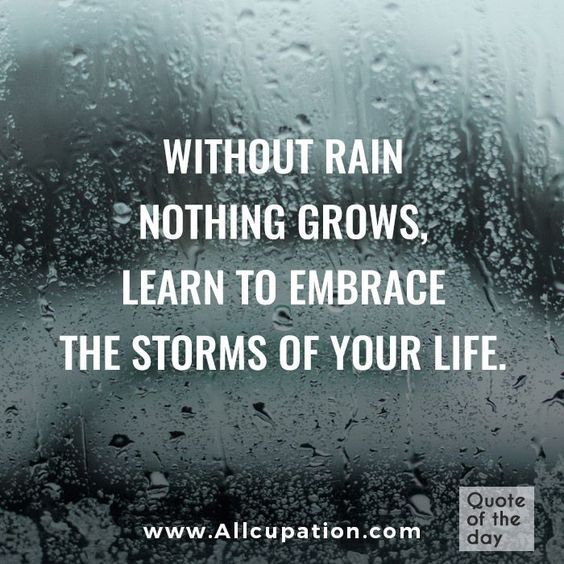 Funny Quotes About Rainy Days: Without Rain Nothing Grows. Learn To Embrace The Storms In