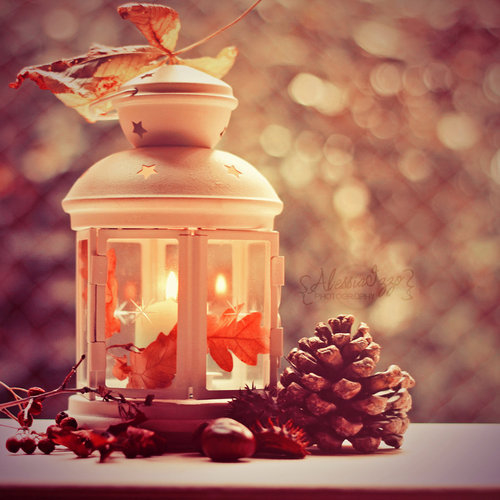 Beautiful Lantern Pictures Photos And Images For Facebook Tumblr Pinterest And Twitter