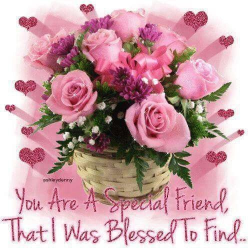 Beautiful Flowers Images With Friendship Quotes: You Are A Special Friend, That I Was Blessed To Find