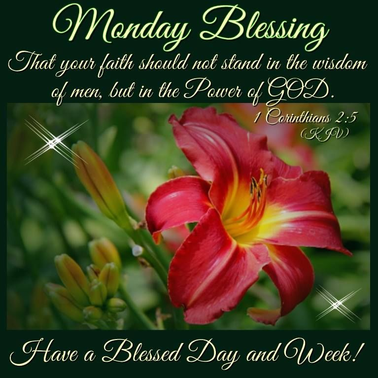 Blessed Day Quotes From The Bible: Monday Blessing, Have A Blessed Day And Week! Pictures