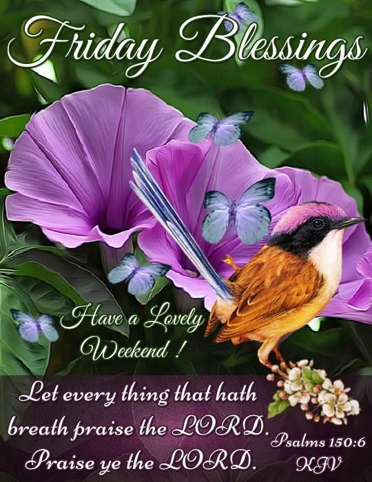friday blessings have a lovely weekend