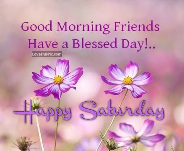 Good Morning Saturday Friends : Good morning friends have a blessed day happy saturday