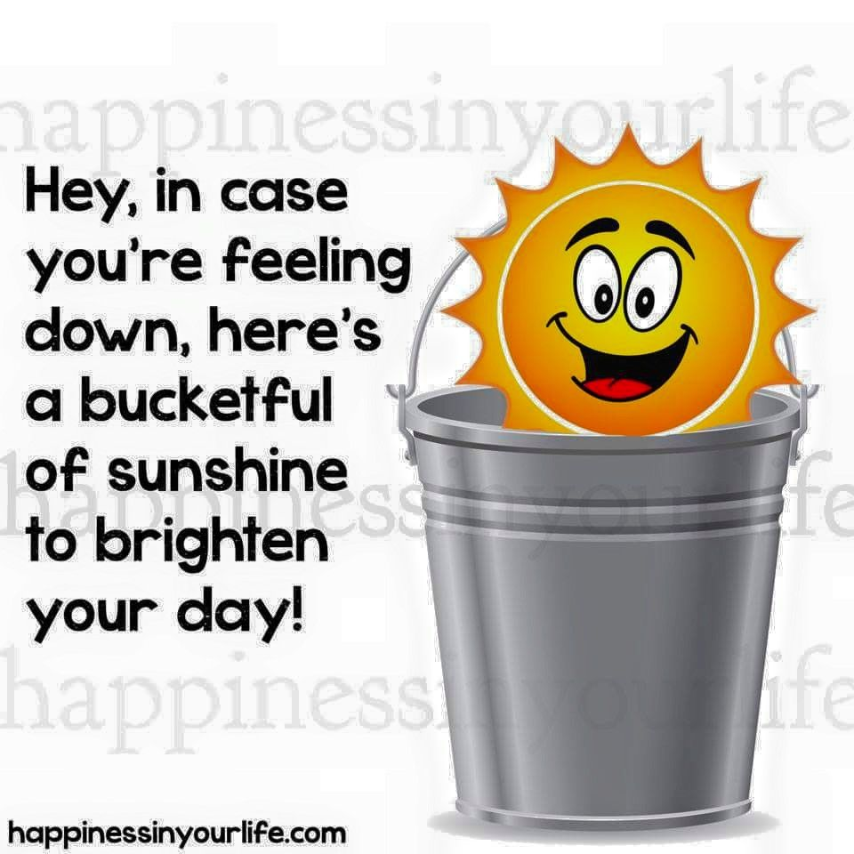Inspirational Day Quotes: Bucket Full Of Sunshine Pictures, Photos, And Images For