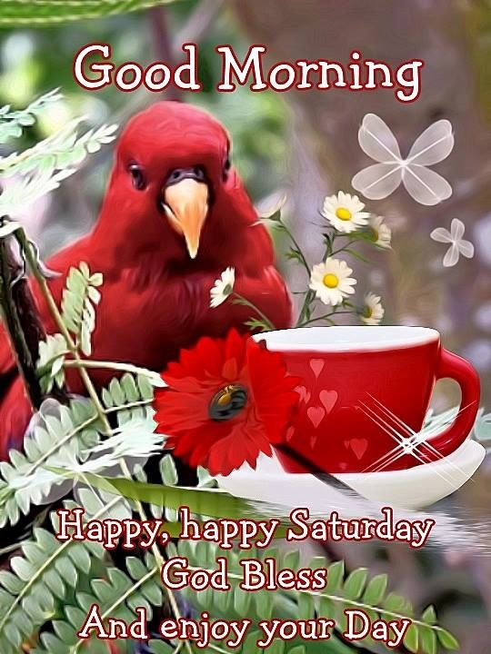 Good Morning Happy Happy Saturday God Bless You Pictures