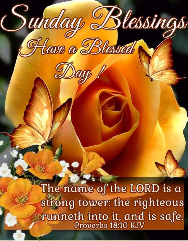 Sunday Morning Religious Quotes: Sunday Blessings Have A Blessed Day Religious Quote