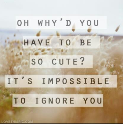 Its impossible to ignore you