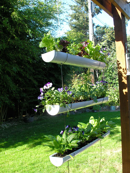Hanging Garden Pictures Photos And Images For Facebook Tumblr Impressive Pinterest Gardens Ideas Pict