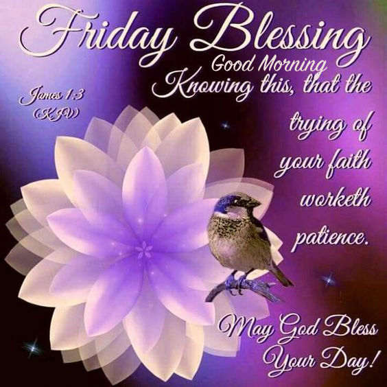 Good Morning Blessings Friday : Friday blessing good morning pictures photos and images