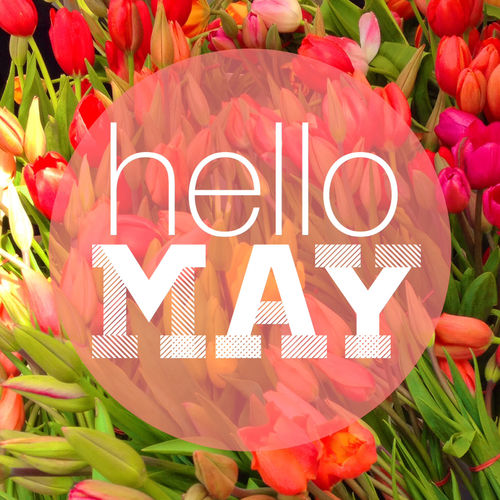 hello may pictures photos and images for facebook
