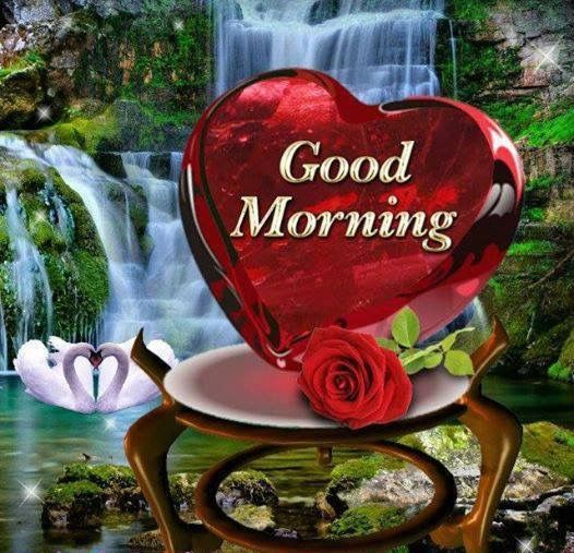 Good Morning Heart Pictures, Photos, And Images For