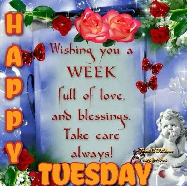 Attractive Happy Tuesday Wishing You A Week Full Of Blessings Ideas
