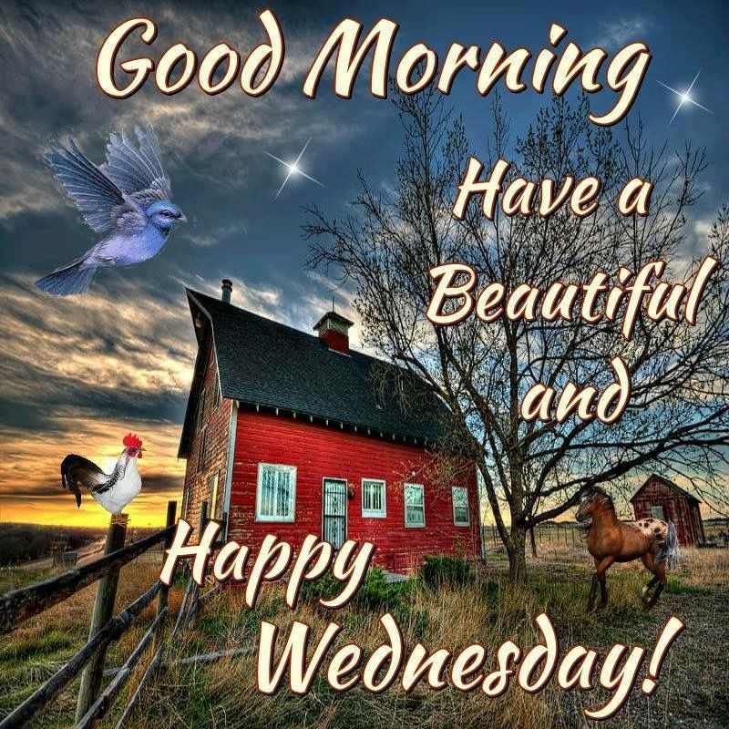 Happy Wednesday Quotes, Messages, Images, Wishes, Sayings ...