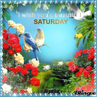 I Wish You A Beautiful Saturday Pictures, Photos, and