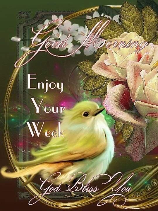 good morning  enjoy your week pictures  photos  and images for facebook  tumblr  pinterest  and