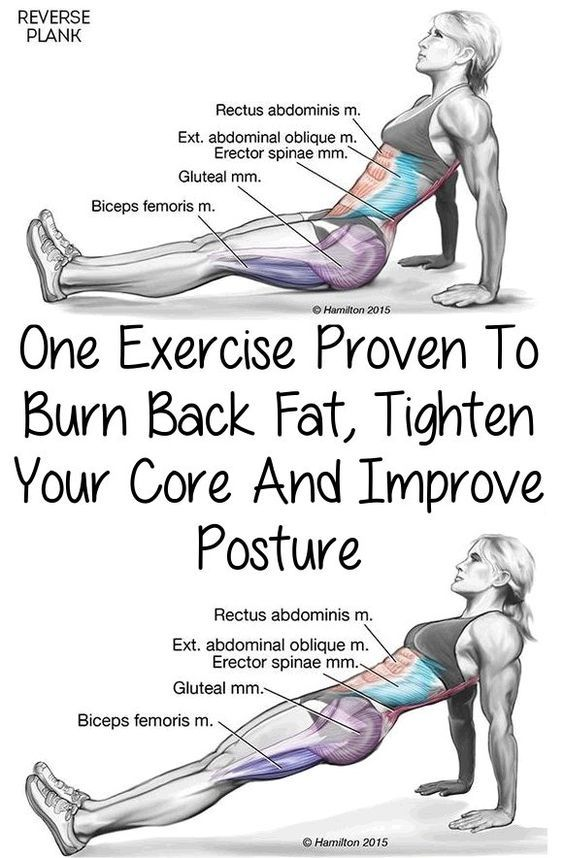 how to burn back fat pictures  photos  and images for facebook  tumblr  pinterest  and twitter