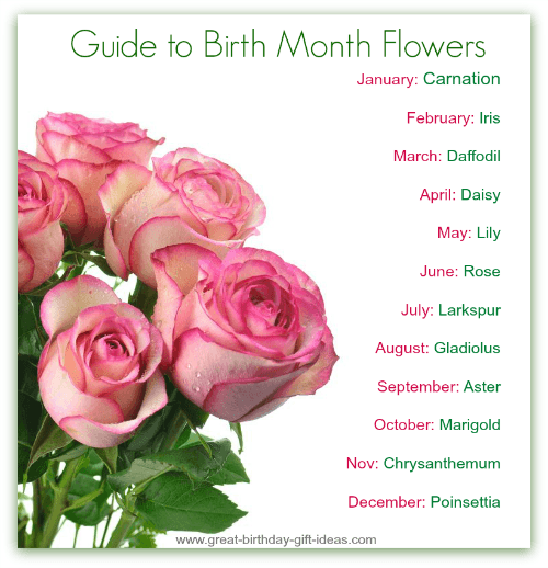 Guide To Birth Month Flowers Pictures Photos And Images For