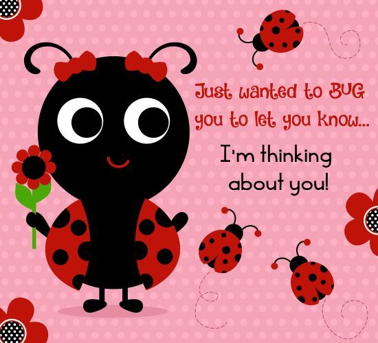 Good Morning Love Bug : Just wanted to bug you let know i m thinking about