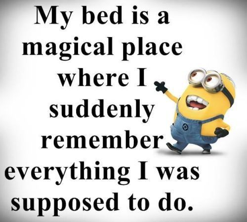 My Bed Is A Magical Place Pictures Photos And Images For