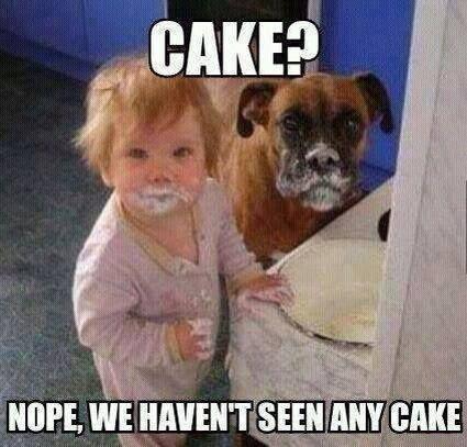 Feeding Cake Tumblr