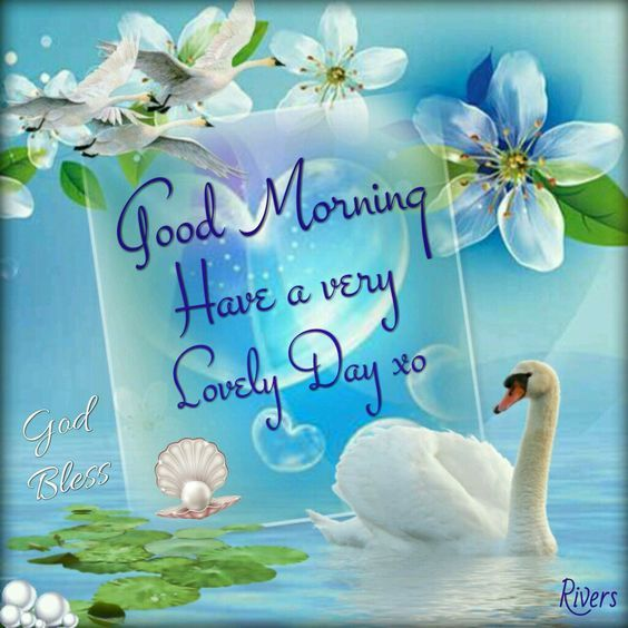 Good Morning, Have A Very Lovely Day Pictures, Photos, and