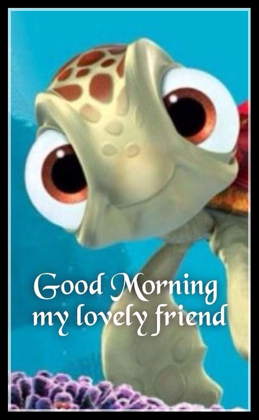 Good Morning My Beautiful Friend Quotes: Good Morning My Lovely Friend Pictures, Photos, And Images
