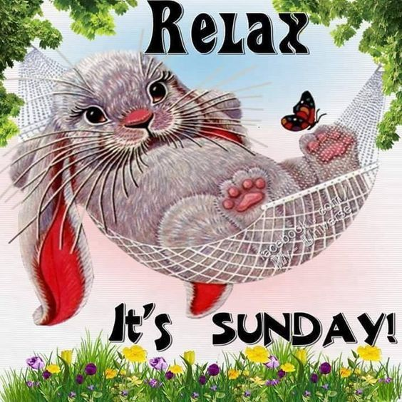 Relax Its Sunday Pictures Photos And Images For Facebook