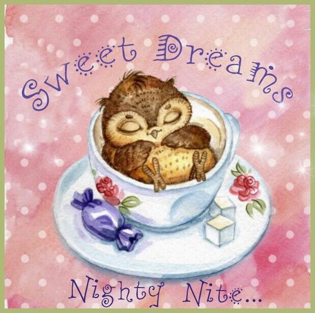Sweet Dreams Nighty Nite Pictures Photos And Images For