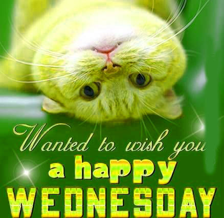 Wanted To Wish You A Happy Wednesday! Pictures, Photos