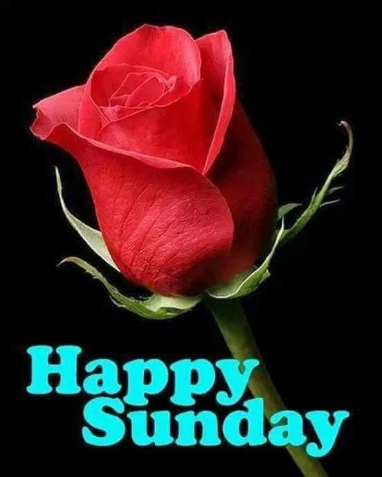 Happy Sunday Pictures Photos And Images For Facebook