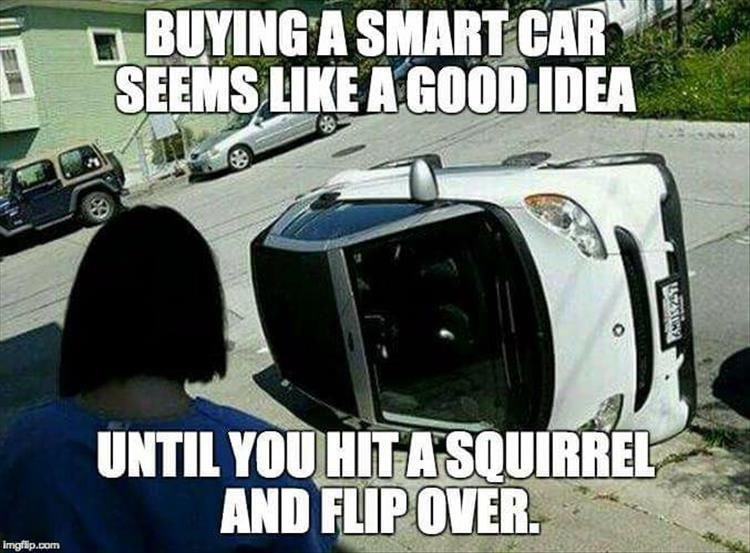 Ing A Smart Car Seems Like Good Idea Until You Hit Squirrel And Flip Over
