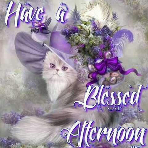 Have A Blessed Afternoon Pictures Photos And Images For