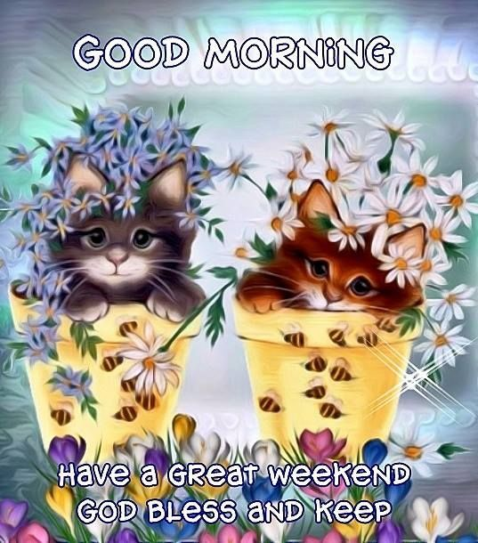 good morning have a great weekend