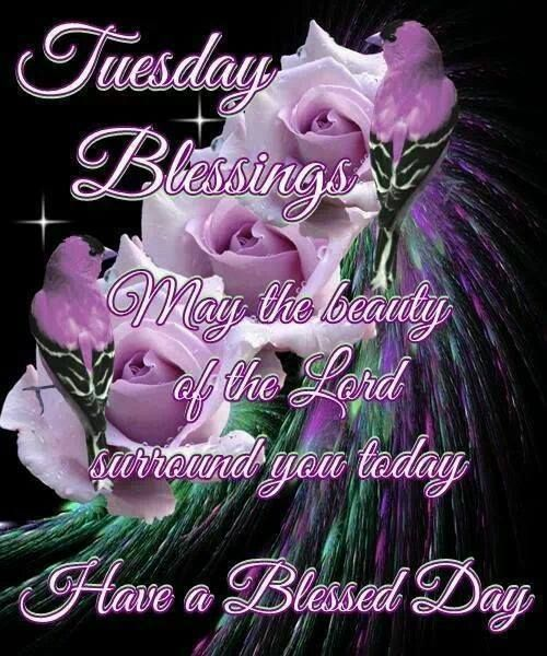 tuesday blessings have a blessed day pictures photos