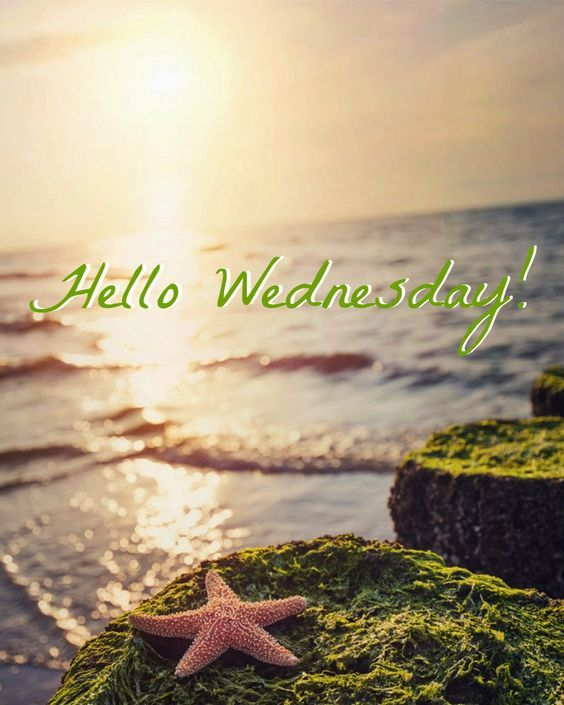 Hello Wednesday! Pictures, Photos, And Images For Facebook
