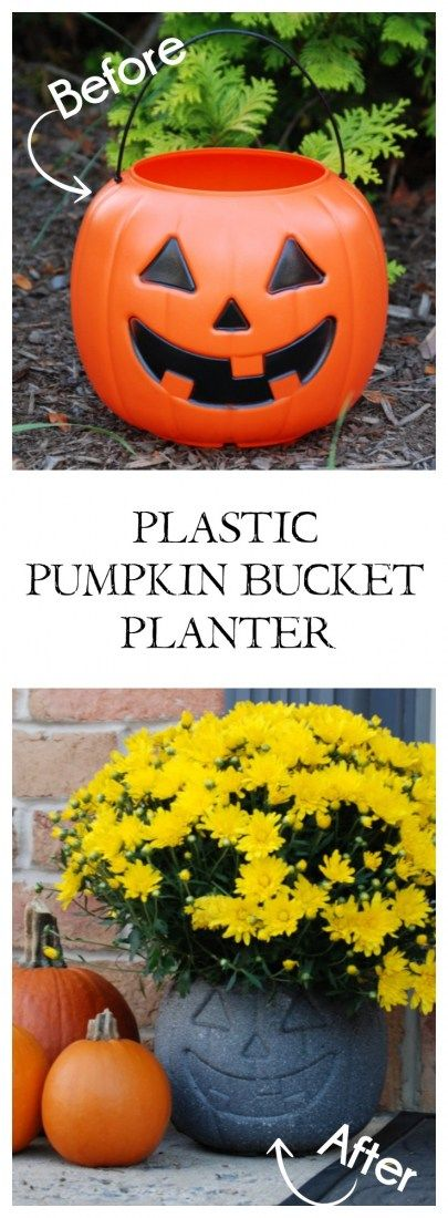 Plastic Pumpkin Bucket Planters Pictures, Photos, and ...