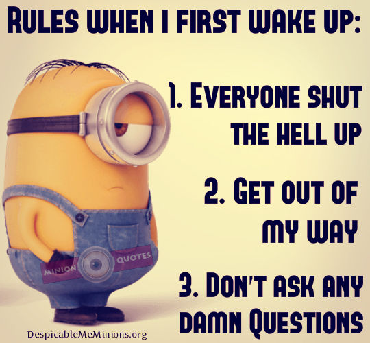 Rules When I First Wake Up Pictures, Photos, And Images