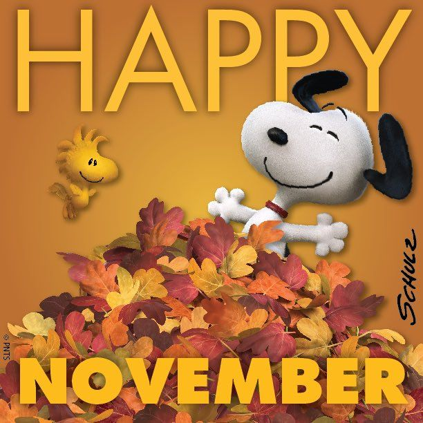 Happy November Pictures, Photos, and Images for Facebook ...