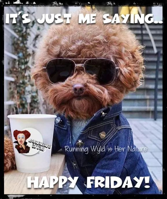 Friday Quotes Humorous: Just Me Saying Happy Friday Pictures, Photos, And Images
